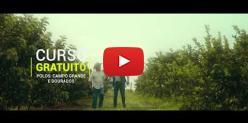 Embedded thumbnail for Técnico em Fruticultura