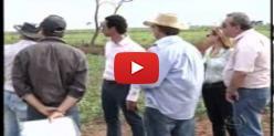 Embedded thumbnail for Encontro de Sustentabilidade na região leste do Estado