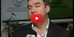 Embedded thumbnail for Avicultura de MS tem potencial para ampliar exportações