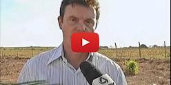 Embedded thumbnail for Justiça suspende reintegração de posse de fazenda - Globo Rural