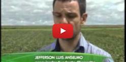 Embedded thumbnail for Presidente da Aprosoja/MS fala sobre estratégia dos produtores de soja