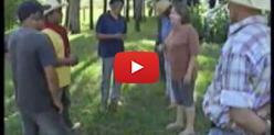 Embedded thumbnail for Invasão da Fazenda Buriti - TV Morena - 15 de maio
