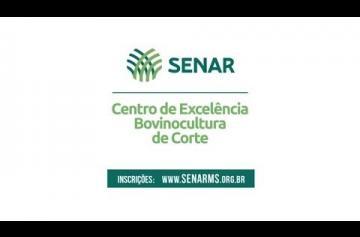Embedded thumbnail for Inscrições abertas para o Centro de Excelência em Bovinocultura de Corte